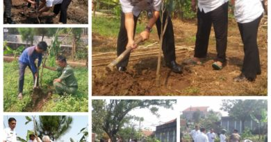Program Penanaman Pohon